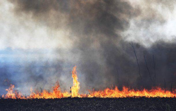 Rosario: Continúan combatiendo contra focos de incendio en islas del Delta del Paraná, a la altura del km10 de la ruta Rosario-Victoria