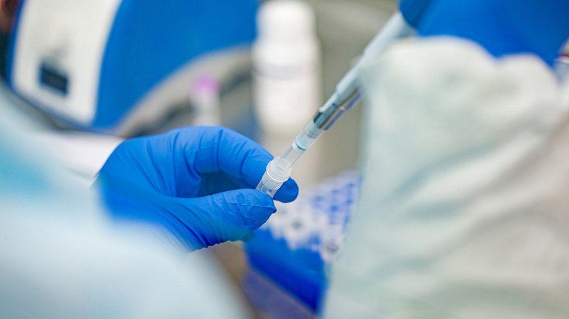 Científicos hallaron un anticuerpo que neutraliza el coronavirus