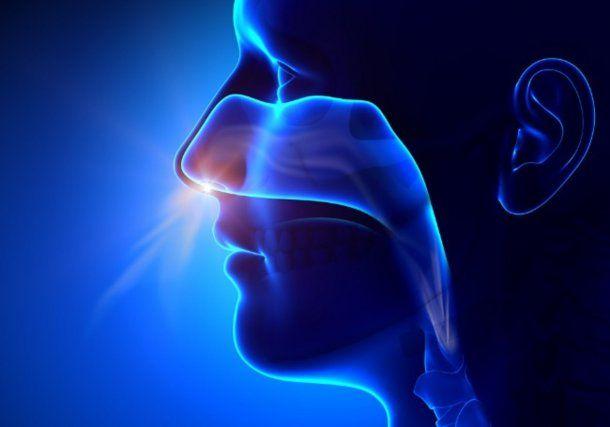 La rinitis alérgica provoca ojos llorosos y comezón, estornudos y otros síntomas similares.