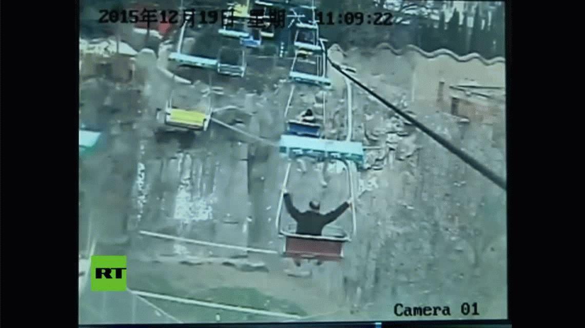Milagro en el zoo: se subió a una aerosilla, se tiró a la jaula de los tigres y lo rescataron