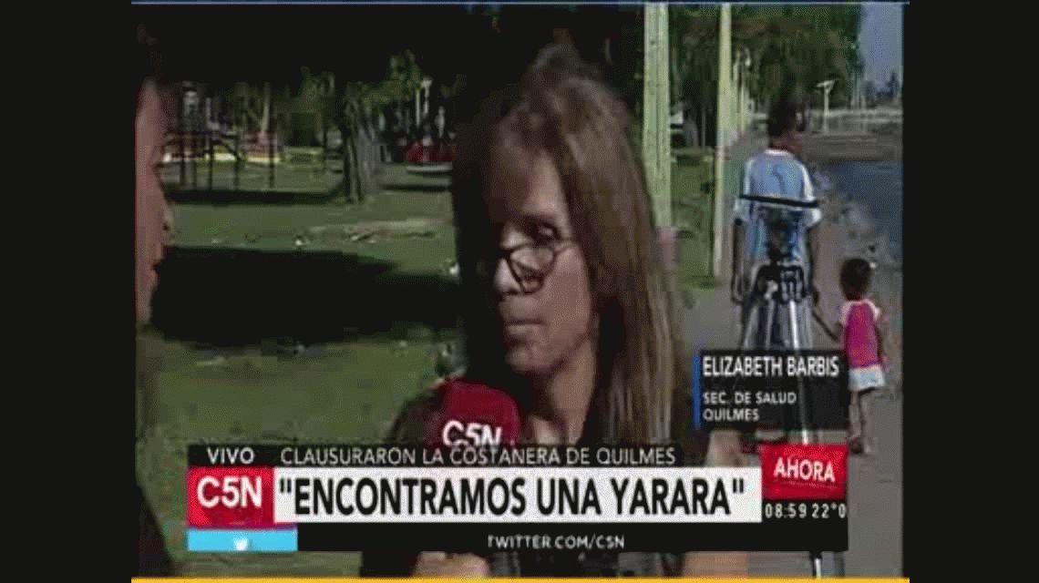 Invasión de culebras y yararás en Quilmes: piden que la población no se acerque a las especies