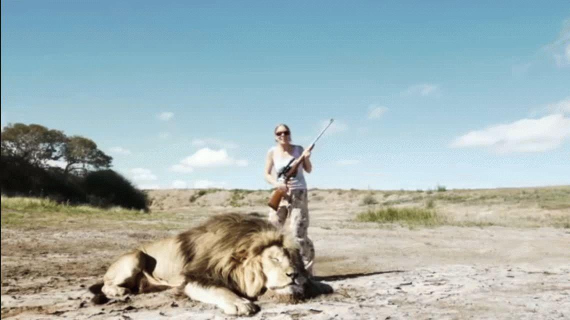 Divulgan el video de la venganza de un león contra unos cazadores