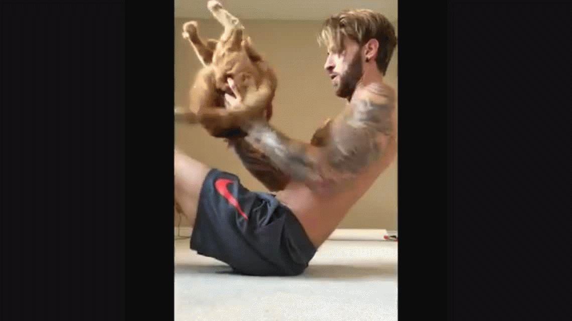 Hizo gimnasia con su gato y Facebook se llenó de amantes de los felinos