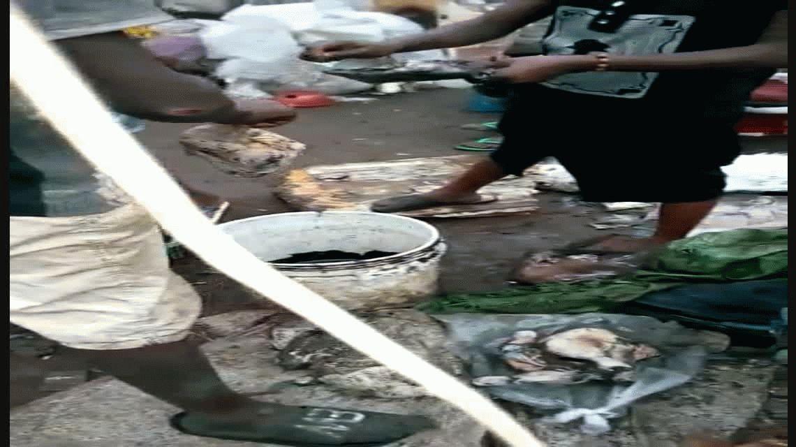 La peor cara de la pobreza en Sierra Leona: habitantes buscan desenterrar pollos podridos
