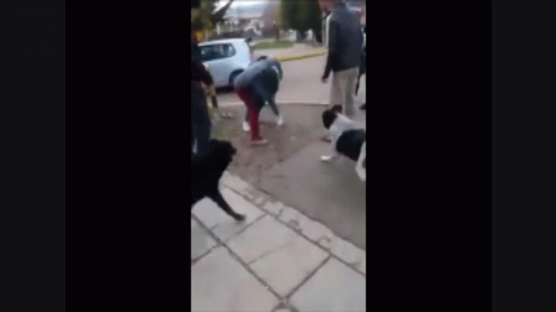 De no creer: la violenta pelea de alumnas que fue inicitada por un padre