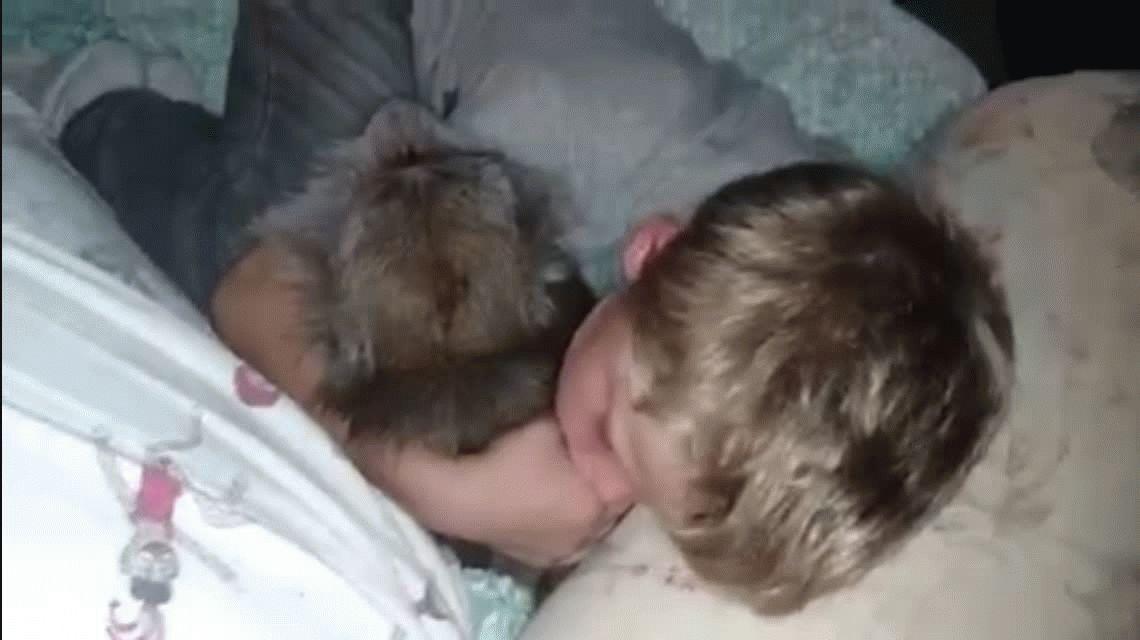 Un nene y un mono duermen plácidamente