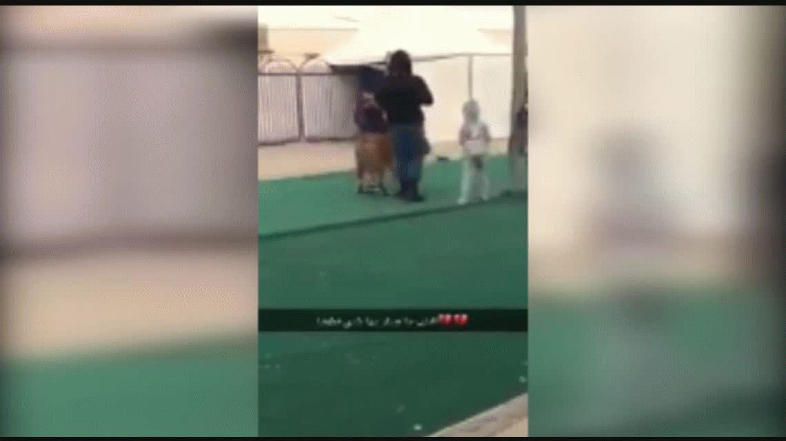 VIDEO: Un tigre atacó a una nena en un mercado de Arabia