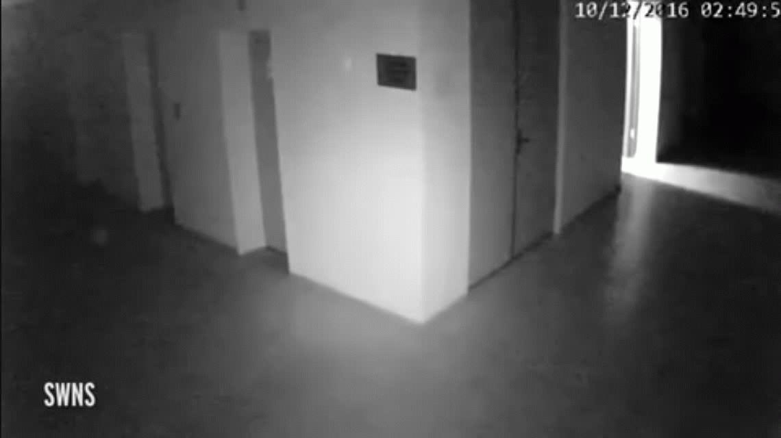 ¿Un fantasma? La extraña aparición que causó terror en una municipalidad