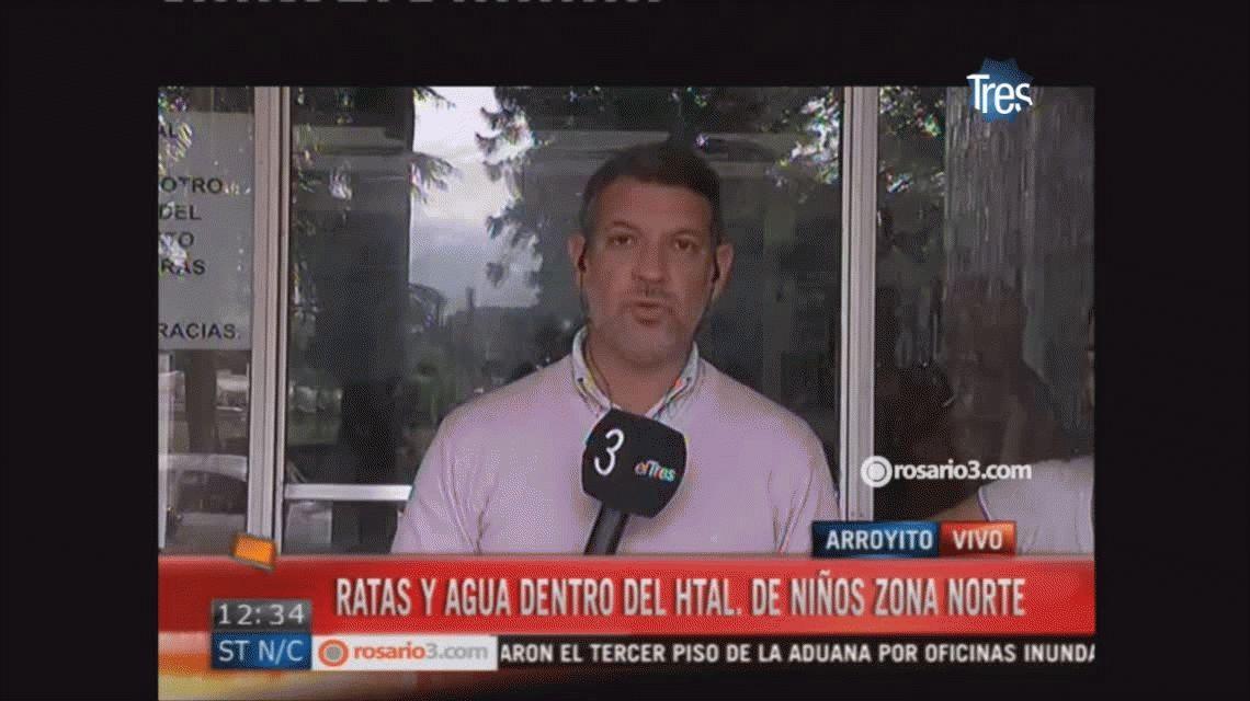 VIDEO: Un hospital de Rosario, lleno de agua y ratas