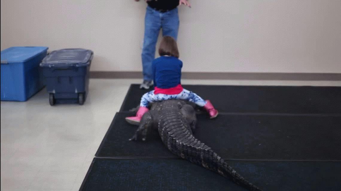 Una nena salió a dar un paseo en lagarto y sus padres quedaron felices