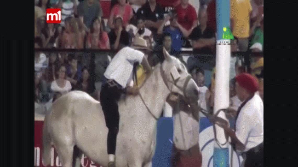 Sacrificaron a un caballo que se accidentó en el Festival de Jesús María