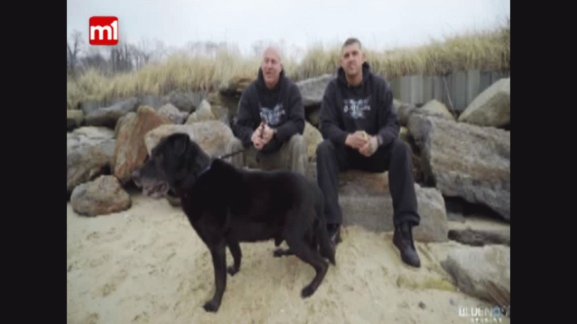Guardians of Rescue liberó a un perro encadenado hacía 15 años