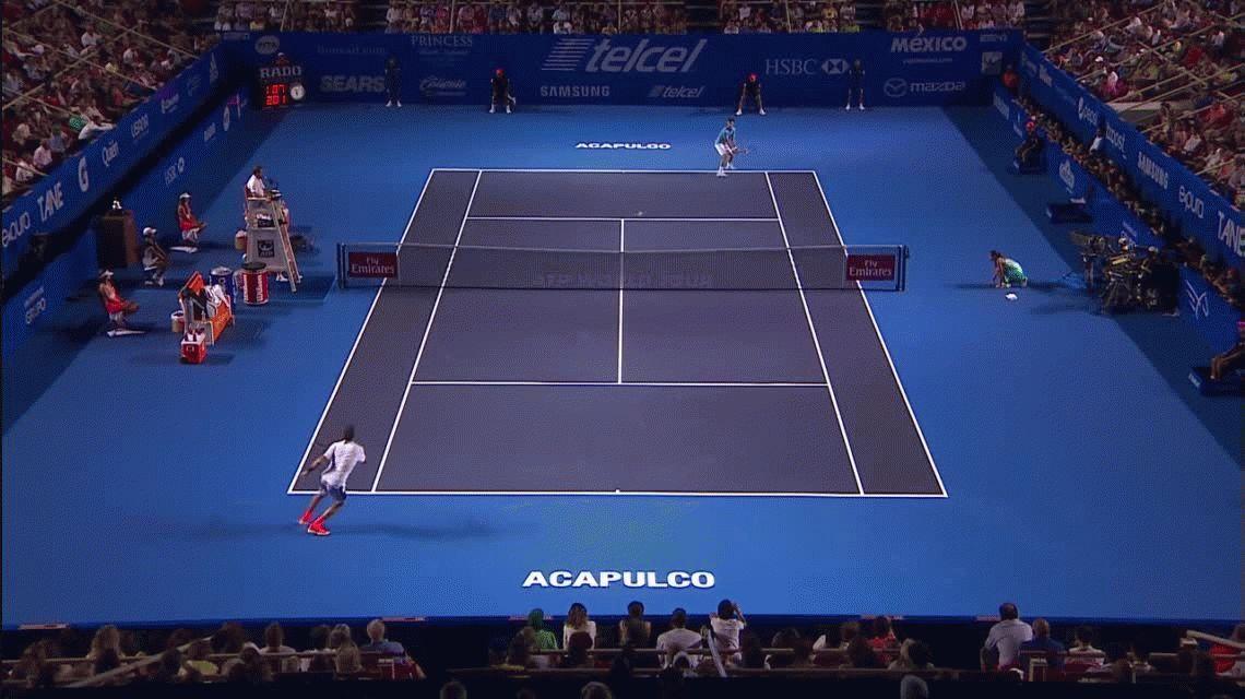 Del Potro jugó un partidazo pero no pudo con Djokovic en Acapulco