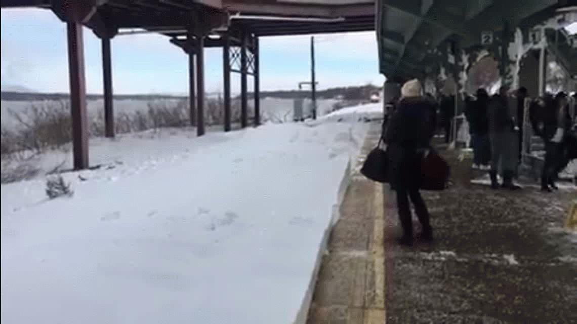 Nueva York: un tren tapa con nieve a los pasajeros que esperaban en la estación