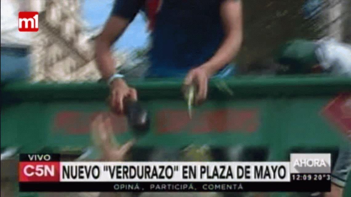 Los productores realizaron un nuevo verdurazo en Plaza de Mayo