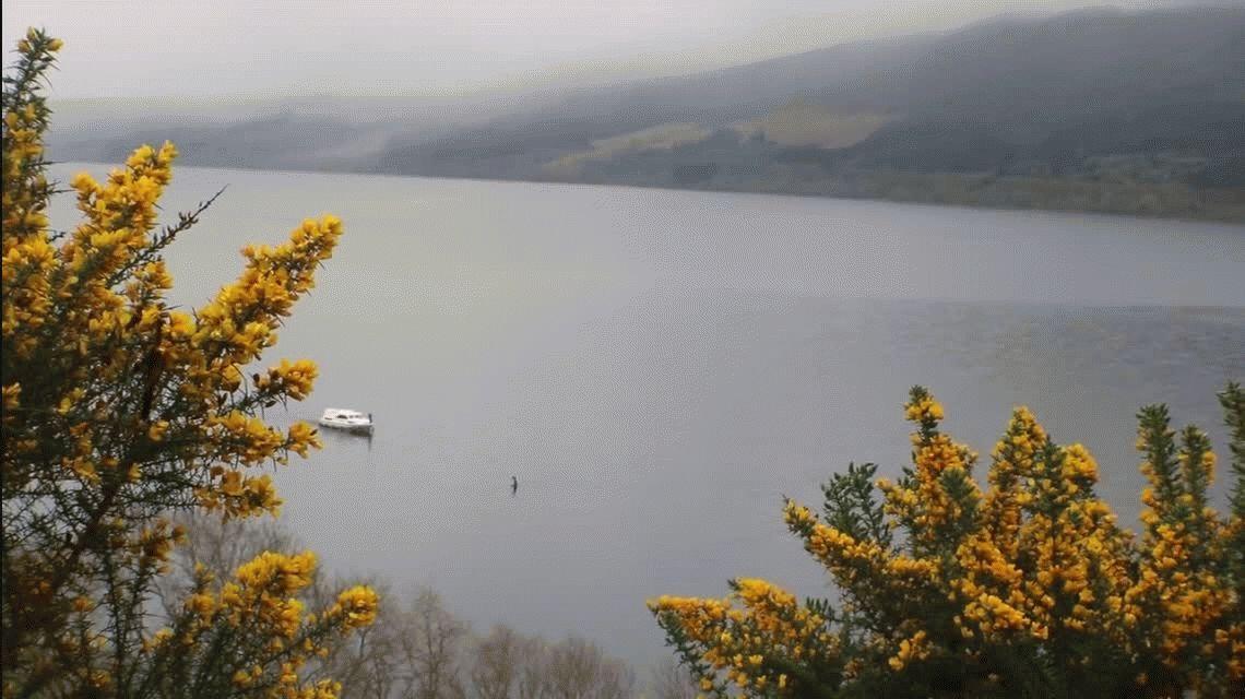 ¿Nueva aparición del monstruo del Lago Ness? Mirá el video