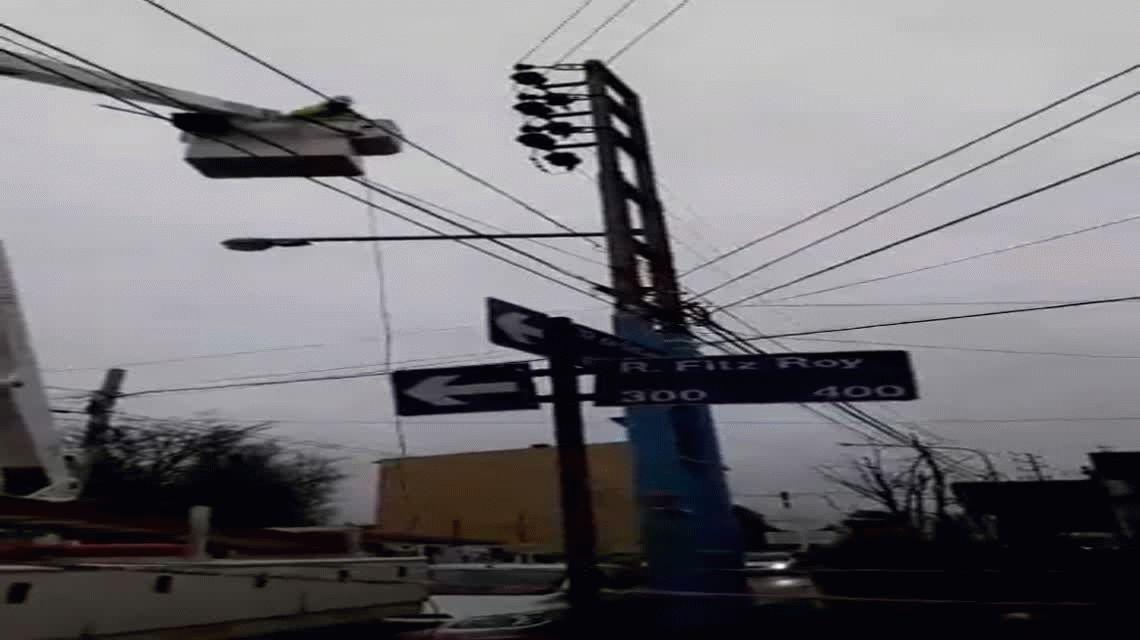 Una gaviota se estrelló contra un poste y dejó sin luz a medio Ushuaia