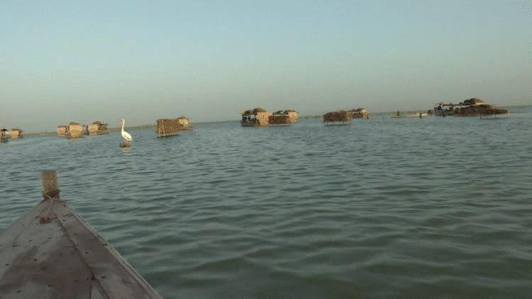 Lago Manchar
