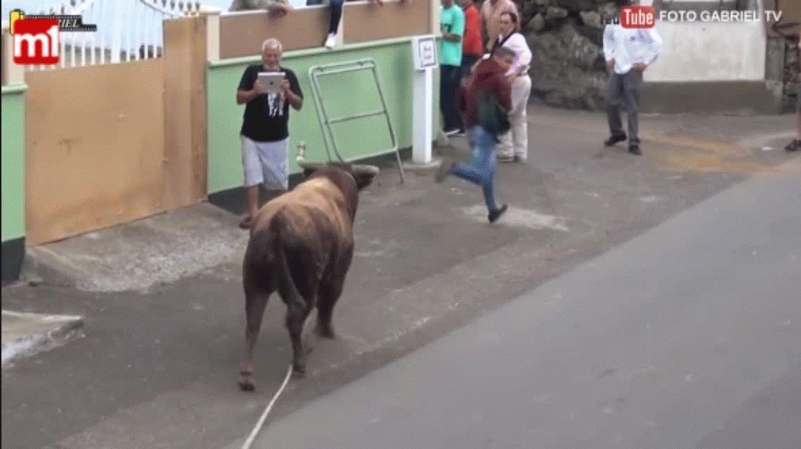 VIDEO: Un hombre filmaba a un toro con un iPad y terminó muy mal