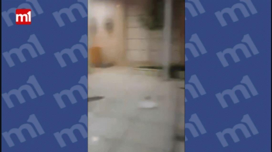 VIDEO: Le quiso dar un beso al perro y terminó con la cara mordida