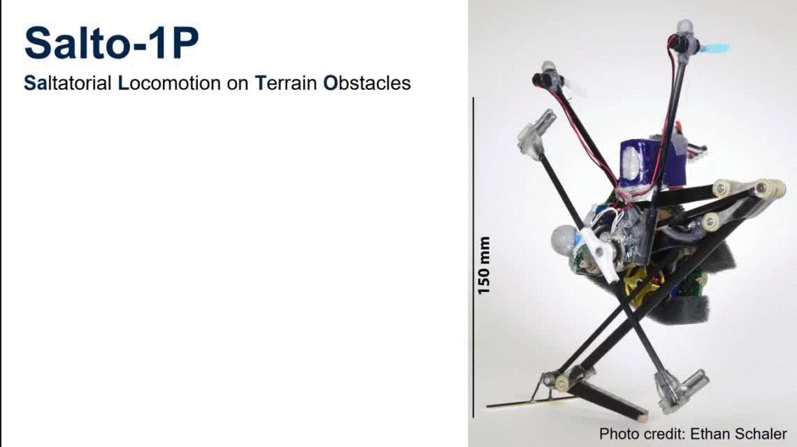 VIDEO: Mirá al perturbador robot que hace parkour