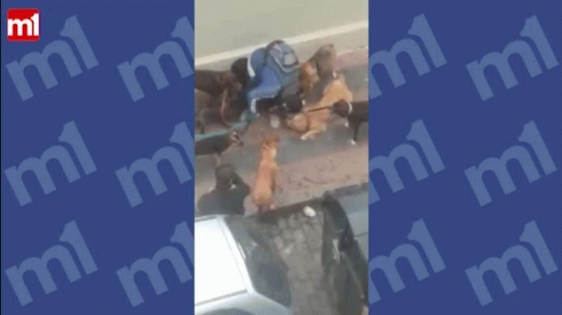 Escrachan a un paseador de perros que maltrata a los animales