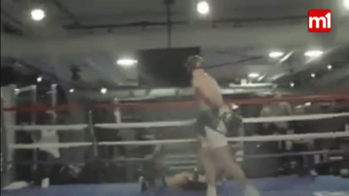 El video sobre el supuesto KO de McGregor a Paulie Malignaggi