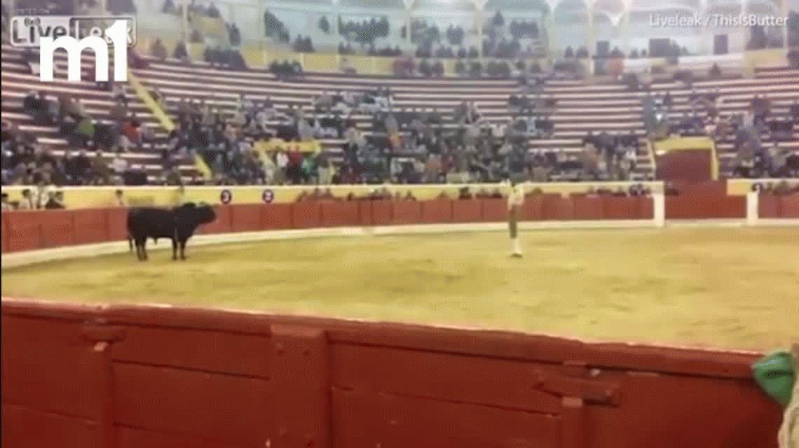El torero Fernando Quintela murió después de la embestida de un toro
