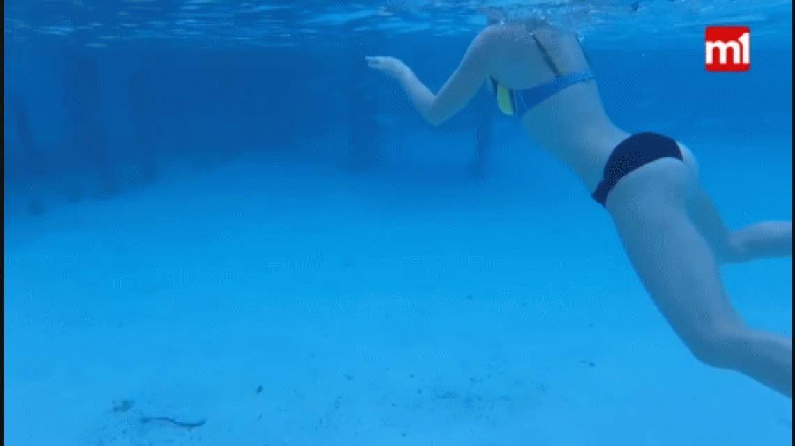 Su mujer sufrió el ataque de un tiburón durante la luna de miel y el la filmó