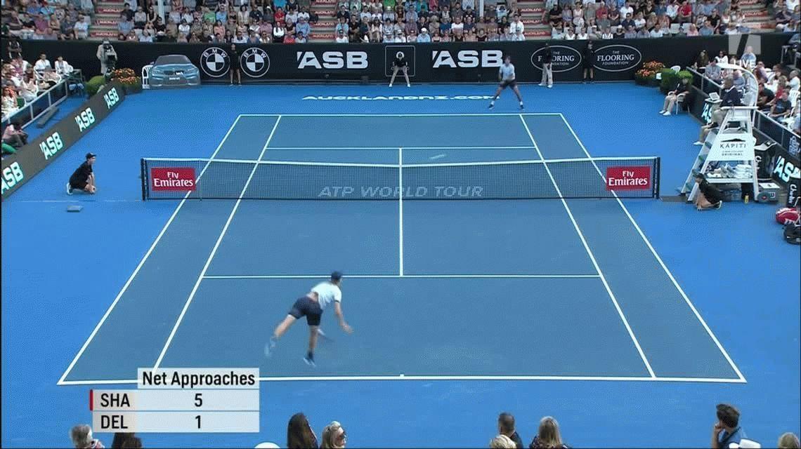 Del Potro es semifinalista en Auckland