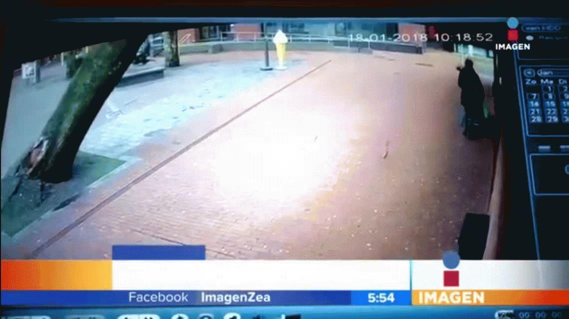 VIDEO: Así se salvaron una mujer y su bebé de ser aplastados por un árbol