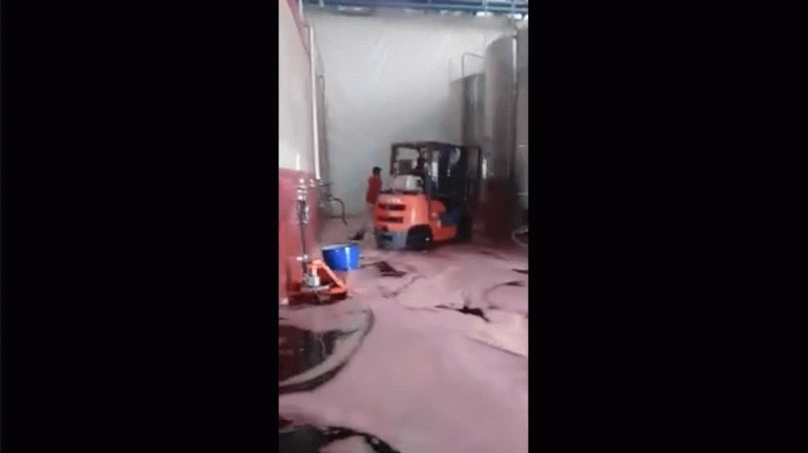 Miles de litros de vino van a parar a la cloaca por el descuido de un empleado