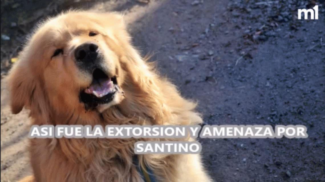 Intentaron extorsionar a la mujer que ofreció su auto para encontrar a su perro