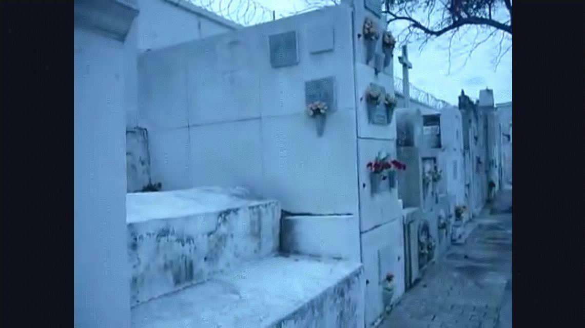 VIDEO: Terror en un cementerio por un fantasma que desaparece detrás de un árbol