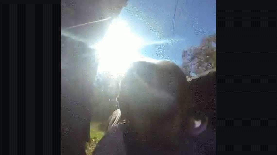 Una perra robó una cámara GoPro y filmó su propia huida