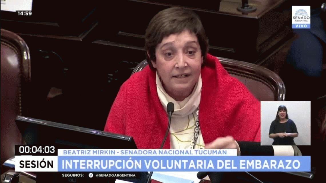 La desubicada interrupción de Michetti a una senadora a favor del aborto legal