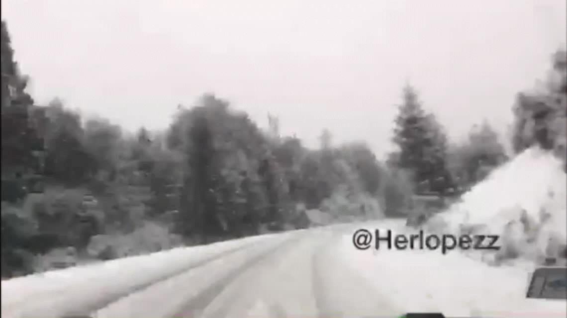 A un año, difunden un video del accidente que casi le cuesta la vida al piloto Mauro Giallombardo