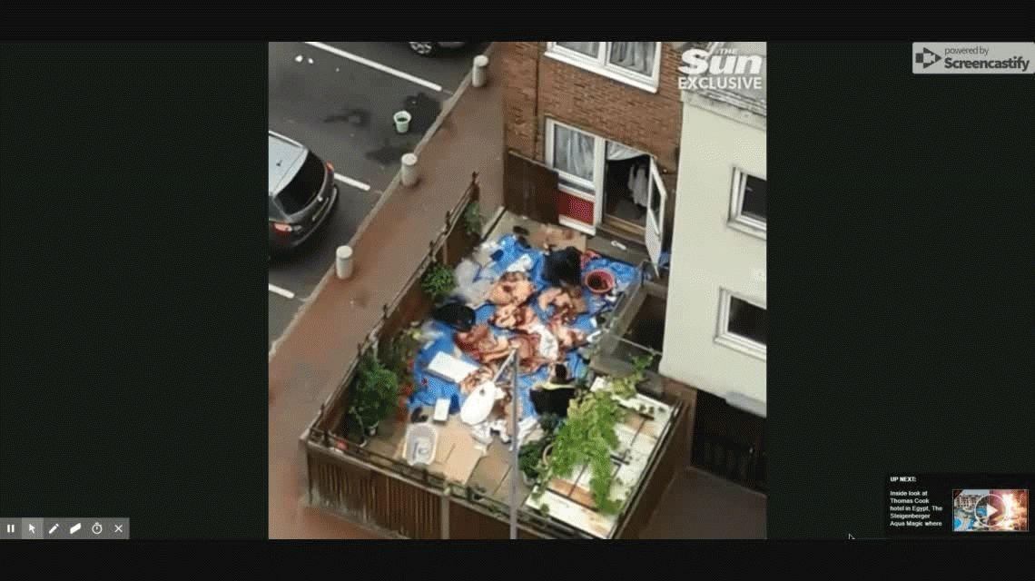 Escalofriante: los encontraron troceando cadáveres de animales en el patio y los denunciaron
