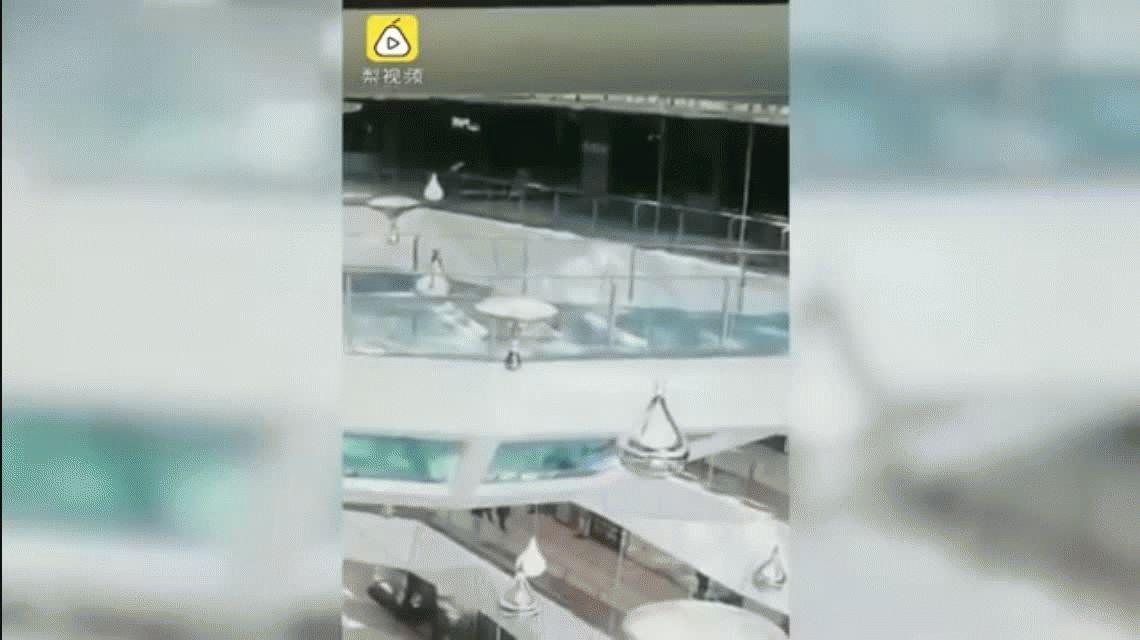 VIDEO: ¡Milagro! Cayó al estanque de los tiburones cuando estaban por comer y sobrevivió