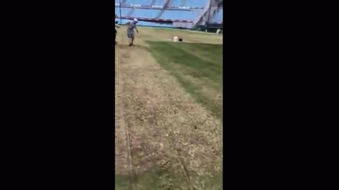 Luis Suárez, indignado porque pintaron el césped del Estadio Centenario