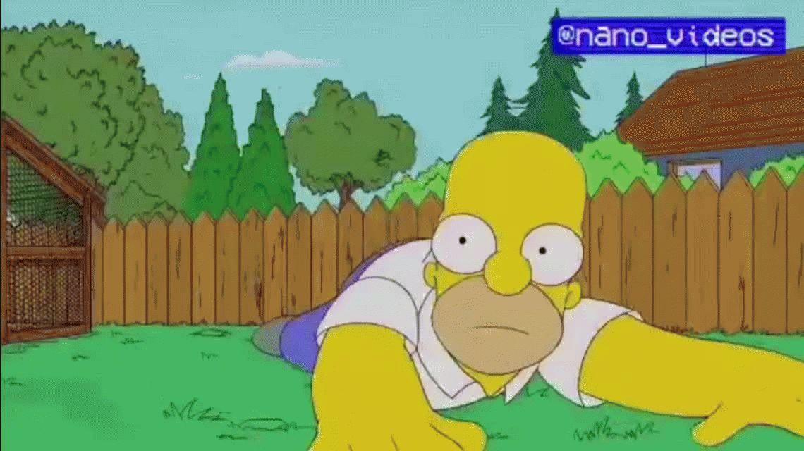 No podía faltar: el capítulo de Los Simpson que predijo el viral del pajarito Chimuelo