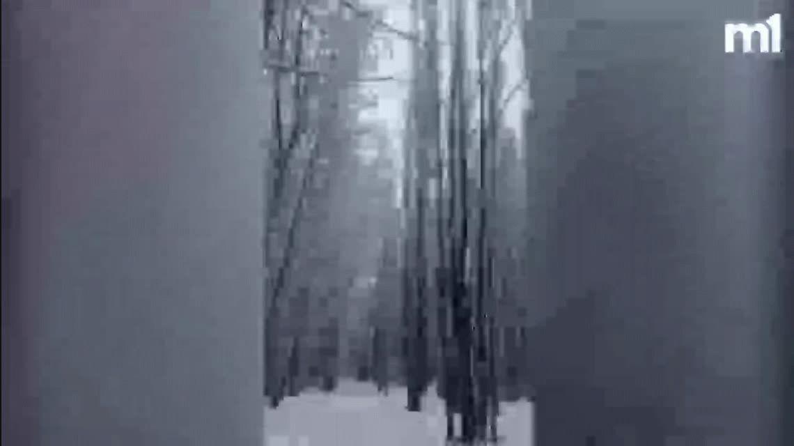 Sin luz, teléfono, clases ni vuelos: Malargüe, una ciudad bajo la nieve en Mendoza