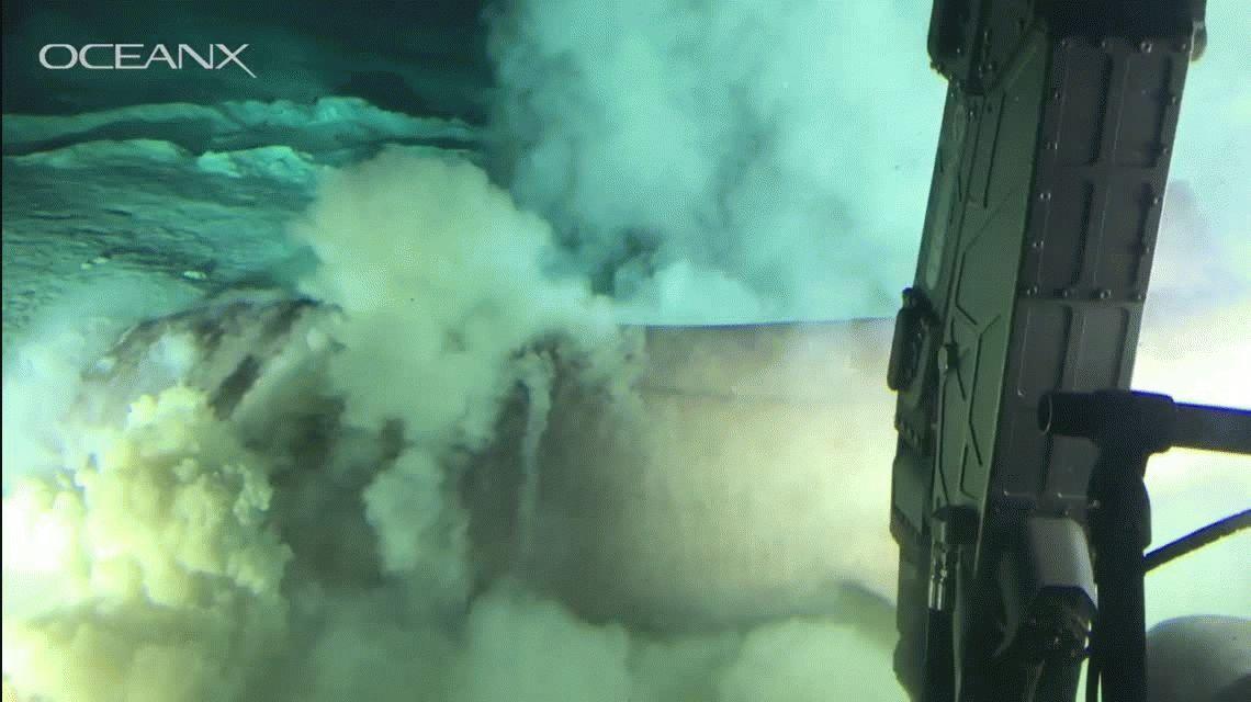 VIDEO: Captaron al tiburón más grande y antiguo del Planeta
