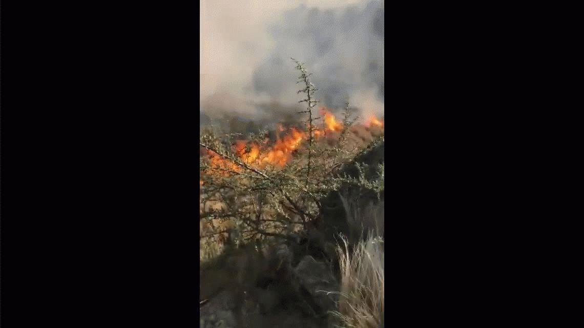 Importante incendio forestal en Córdoba: hay evacuados y aún no logran controlar las llamas