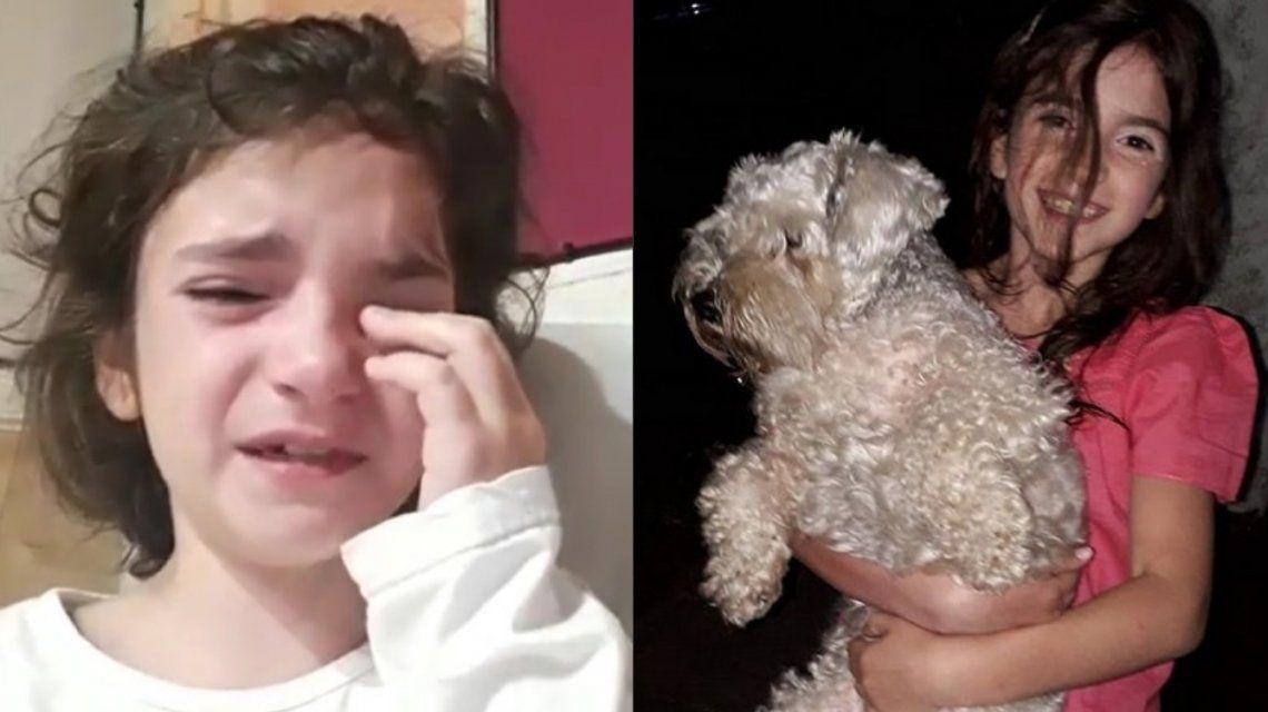 Cumple 9 años este martes y su único deseo es recuperar a su perrita: el desesperado pedido de Jazmín