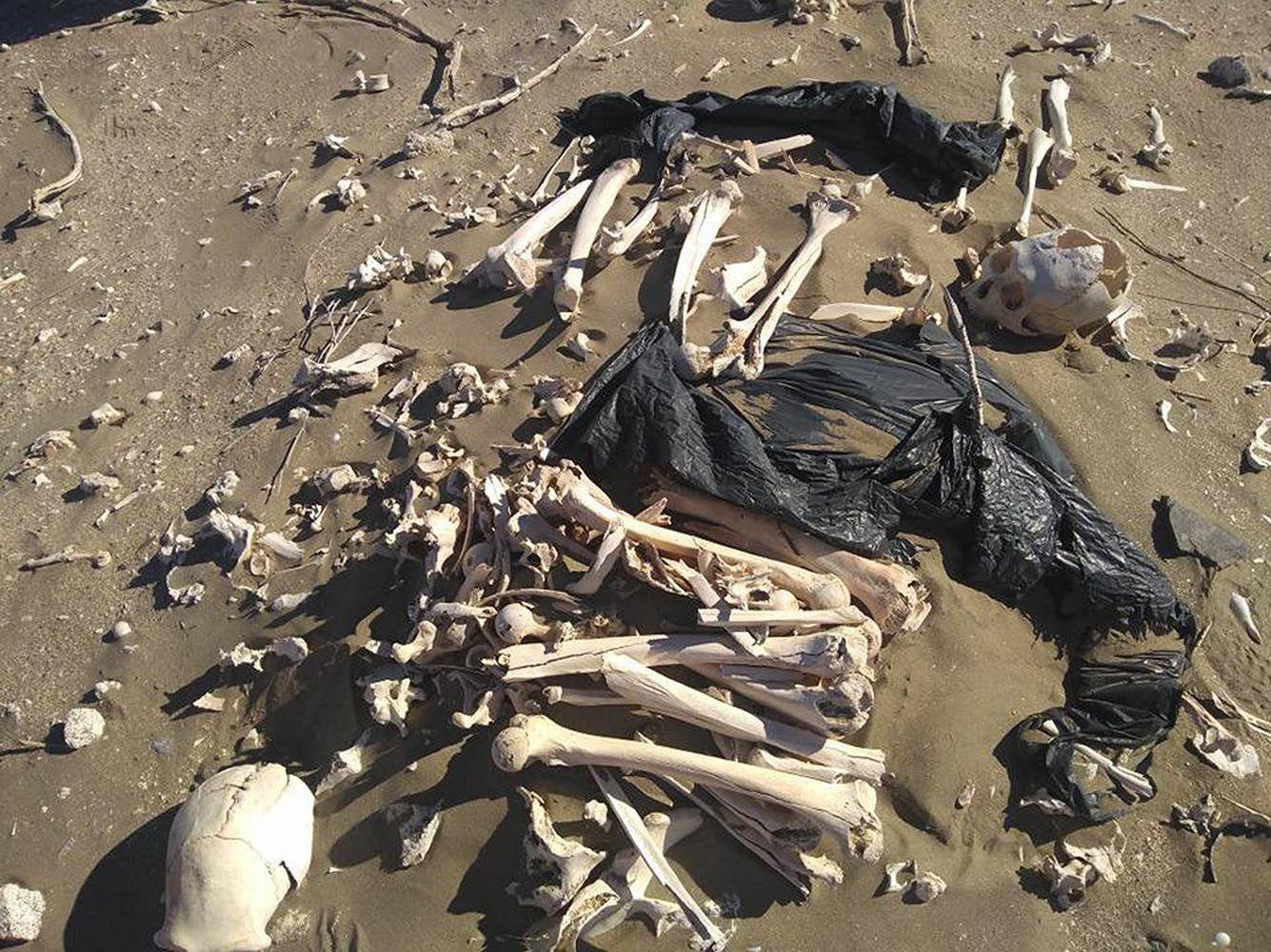 Los restos óseos llamaron la atención y desde el CENPAT salieron a aclarar que ya los habían relevado y que pertenecen a pobladores tehuelches.