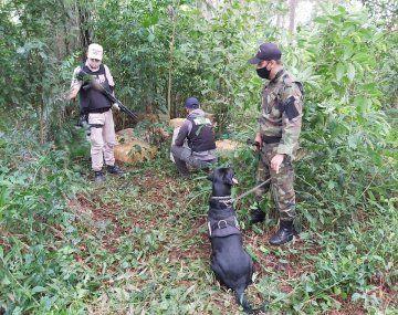 Prefectura desarticuló una operación de narcotráfico y secuestró más de una tonelada de marihuana