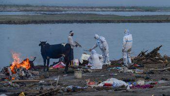 el dramatico relato de un argentino sobre la crisis sanitaria en india: esto es una catastrofe