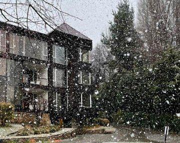Llegó la nieve Bariloche: videos y fotos de un espectáculo deslumbrante