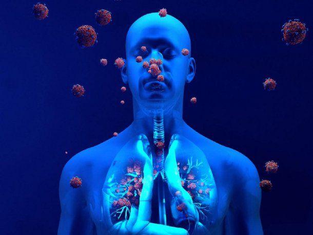 La inmunidad desarrollada contra el coronavirus podría durar años